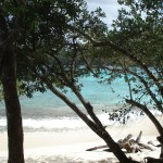hawksnest beach SJ