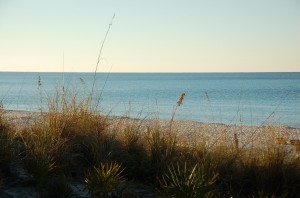 Florida Beach 1
