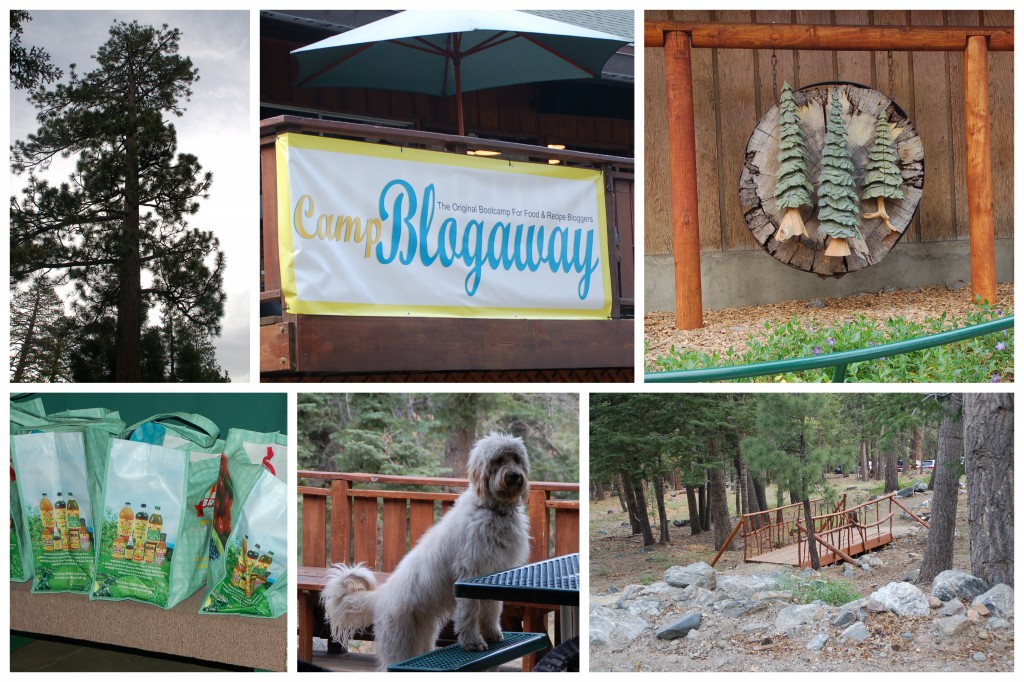 Camp Blogaway 2014