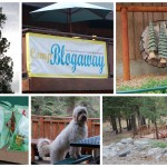 My first visit to Camp Blogaway