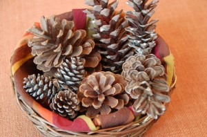 A baket of pinecones from ascrumptiouslife.com.